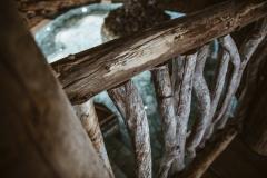 Uppotukkeja ja vanhaa puuta